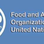 16η Οκτωβρίου,  Παγκόσμια Ημέρα Διατροφής και Προβληματισμού
